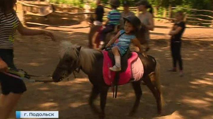 В Подольске отравили лошадей в конюшне, где занимаются тяжелобольные дети