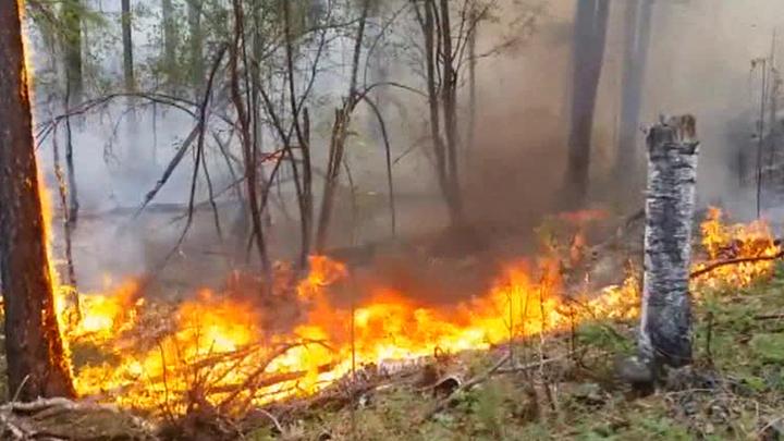 Сухие грозы подожгли остров Ольхон на Байкале