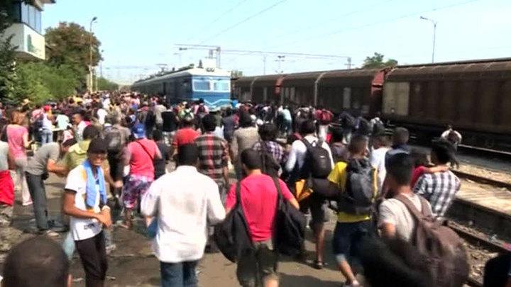Германия, Греция, Македония: Европа не справляется с потоком мигрантов