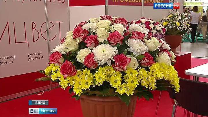 Цветы выставка вднх