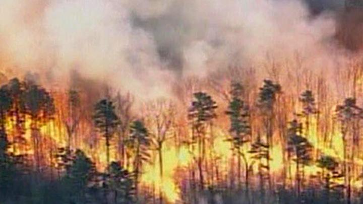 Канада. Лесные пожары