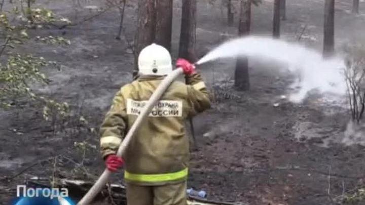 Ученые ищут объяснение страшных пожаров на Байкале