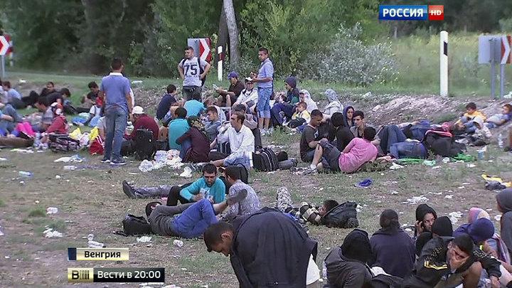 Вызов для всей Европы: мигранты начали пеший марш на Вену