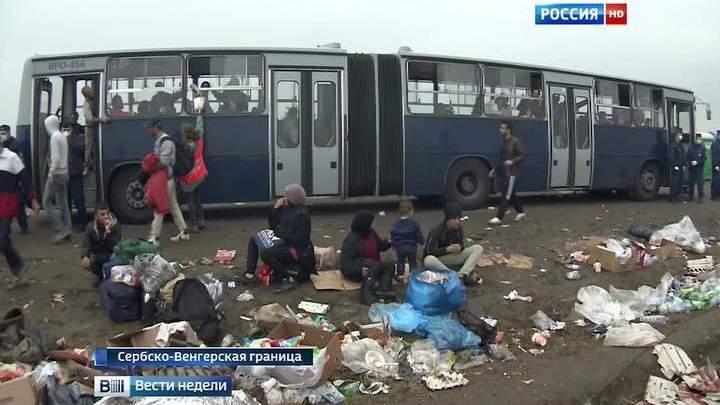 """""""Натовская бритва"""" против нелегалов"""
